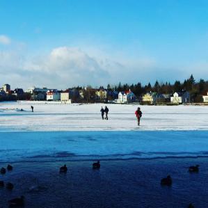 Frozen pond in Reykjavik 101