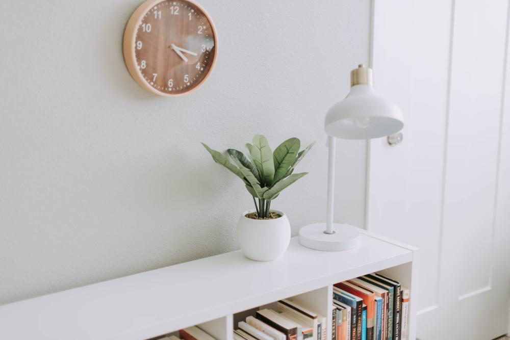 A plant and a lamp on a white bookcase
